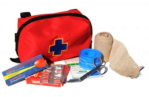 First Aid Responder (FAR) Training Bursary Registered Early Learning and Care Services and Registered Childminders